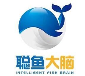 聪鱼大脑教育