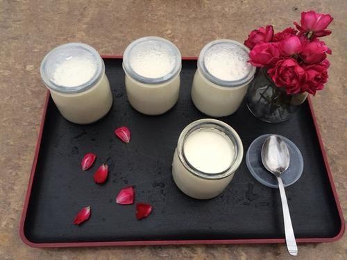 怎样加盟umoo手工酸奶呢?看好详细加盟信息