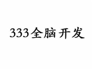 333全脑开发