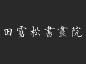 田雪松书画院