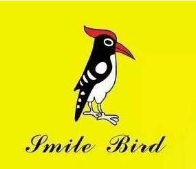 啄木鸟皮具