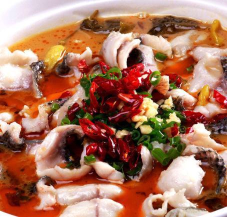 胡子酸菜鱼